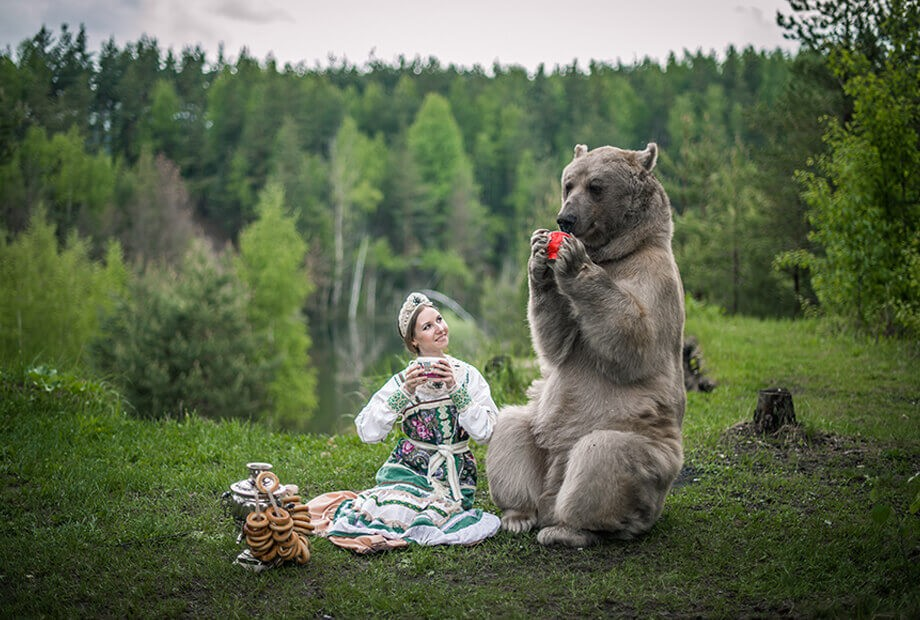 photo_bear